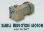 Small Induction Motor PE-EI Product